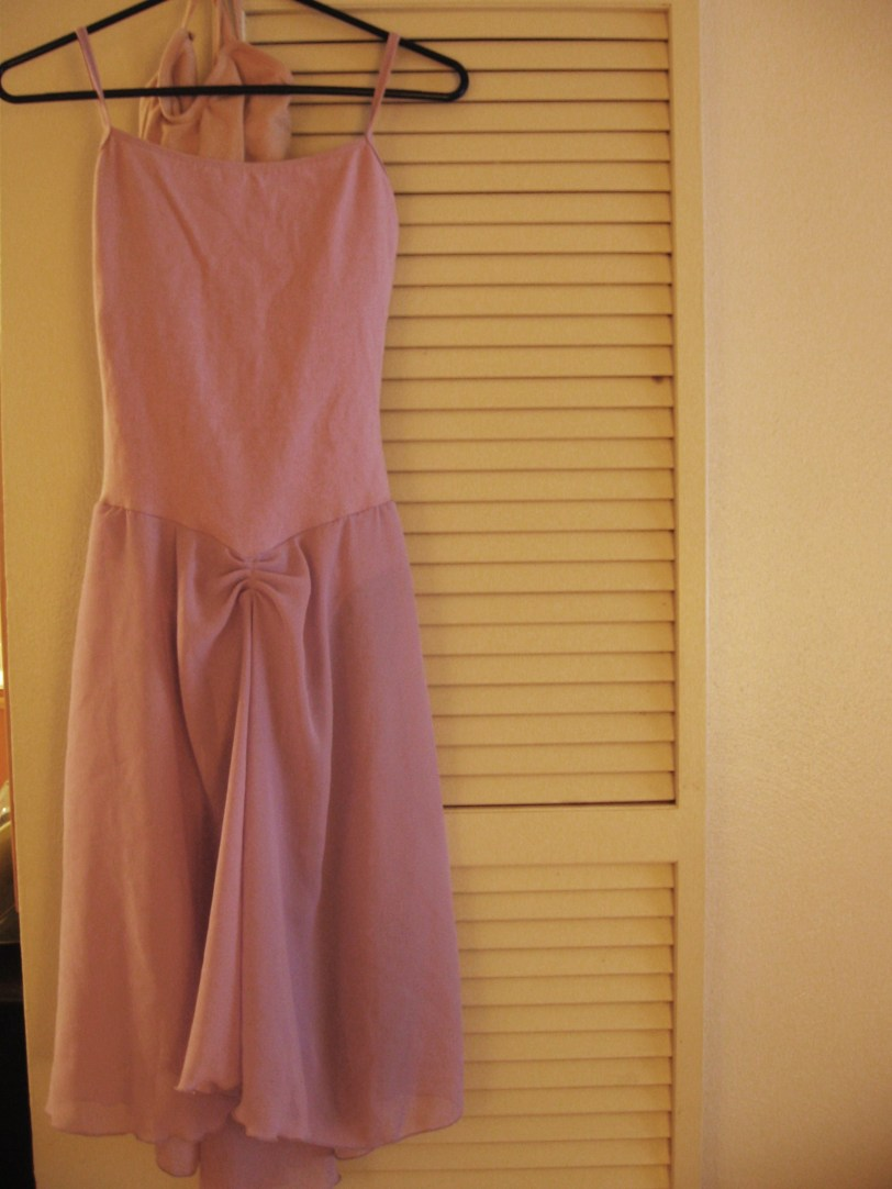 Nude MStevens leo in case I feel like pretending to be Eve and a lavender dance dress with an unflattering right-above-the-crotch gather (Danskin)