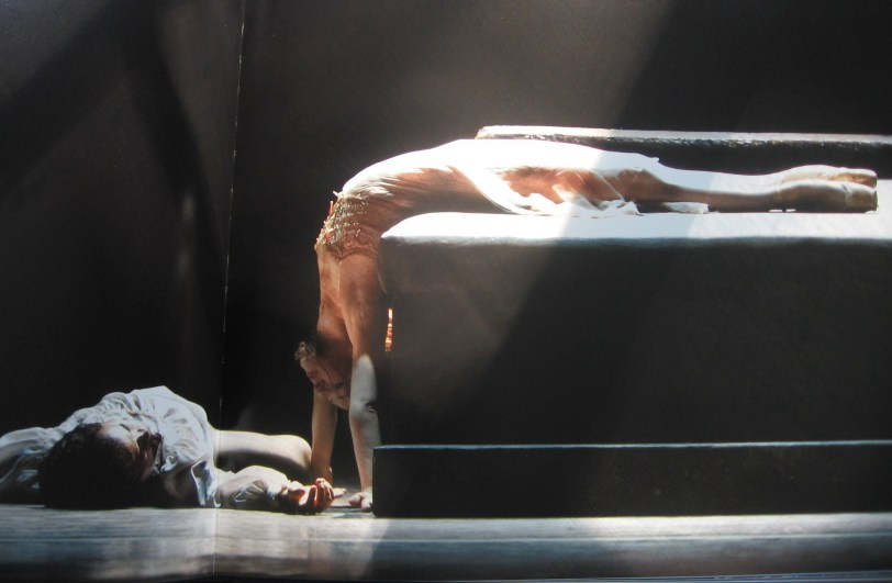 Oh the shame! Beautiful photo from Nancy Ellison's ,'In classic Style' with ABT